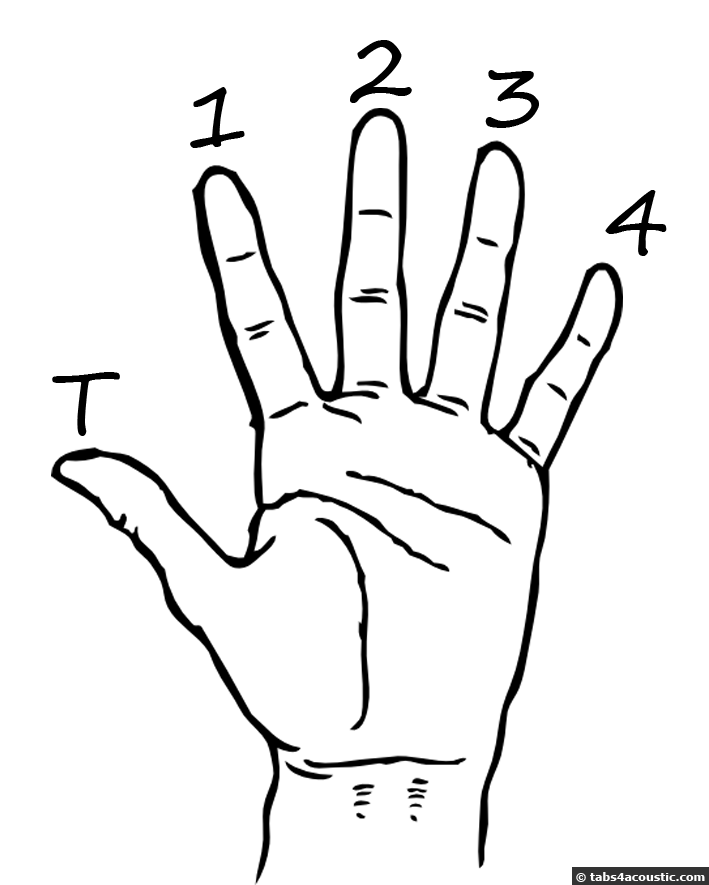 Hand diagram The index is numbered1 The medium finger 2